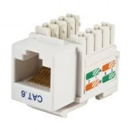 D-link Cat-6 UTP RJ45 Modules with Faceplate (2 Port)r