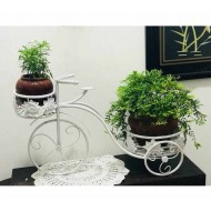 Small plant decoration cycle stand